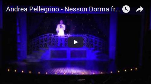 Andrea Pellegrino - Nessun Dorma